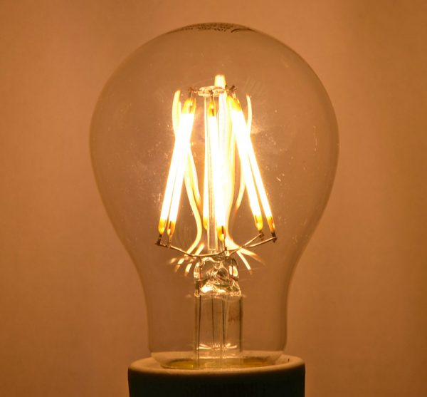 Warm White LED Bulb