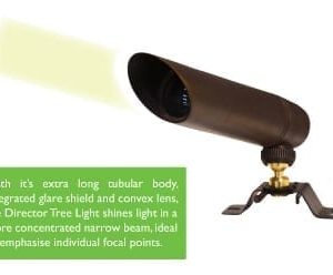 Brass Spot Light Beam Angle