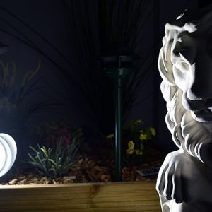 Parflood 38 Lion Uplight Example