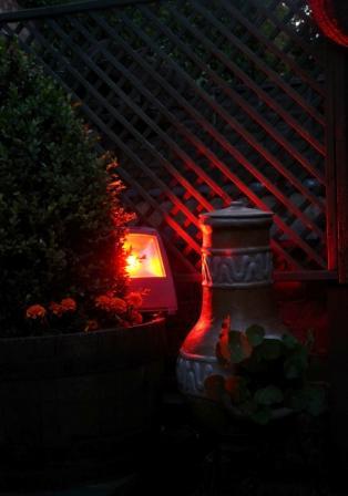 RGB LED Floodlight In Situ