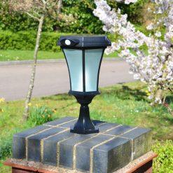 Solar Pedestal Light with PIR