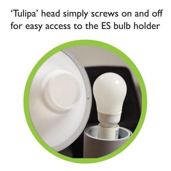 Tulipa Head Screw Detail