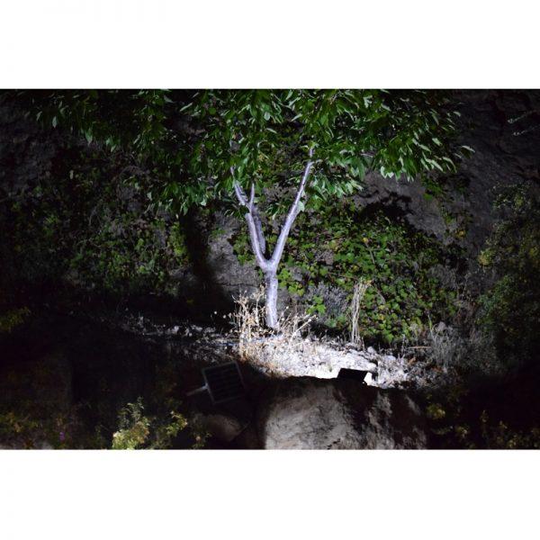 Lumelux 25W Solar Flood Light in Situ