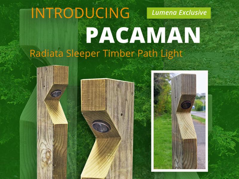 Pacaman Timber Path Lights